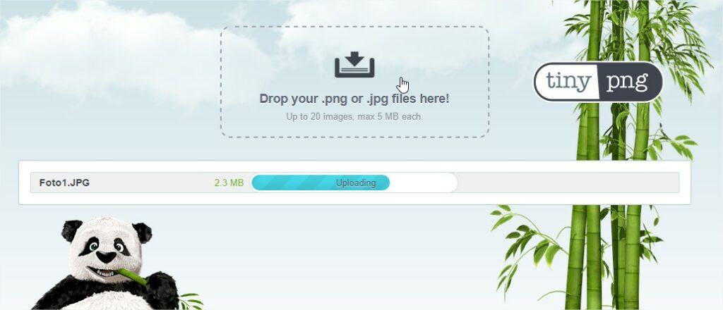 Interfaz de la aplicación TinyJPG