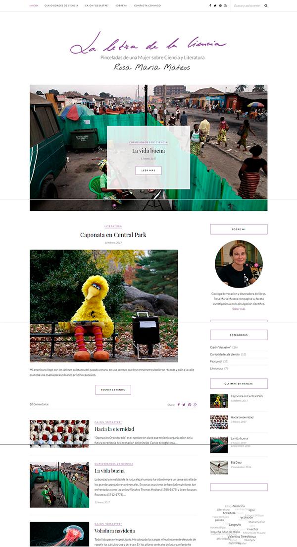 Ejemplo de artículo con leer más en la pantalla de inicio de una web