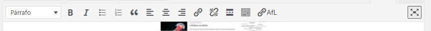 Botón más herramientas desactivado en el editor de texto de WordPress